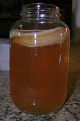 jar with SCOBY is part of the kombucha recipe